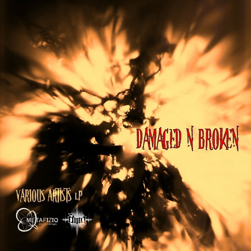 MTFZDMG V.A. - Damaged n Broken LP (2013)